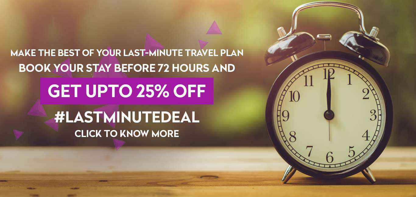 Royal Orchid Last minute Deal