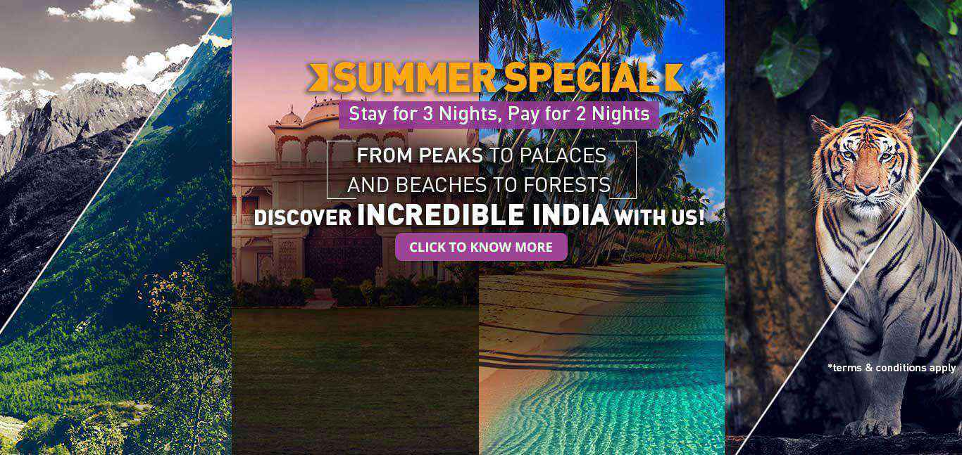 Royal Orchid Summer Special