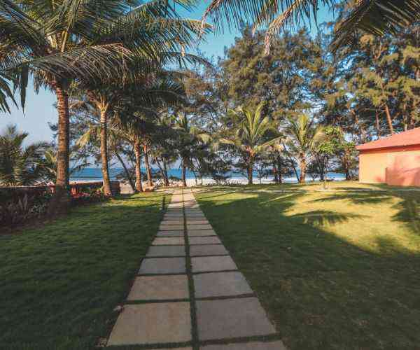 Regenta Place Mandrem Beach Resort, Goa-Gallery
