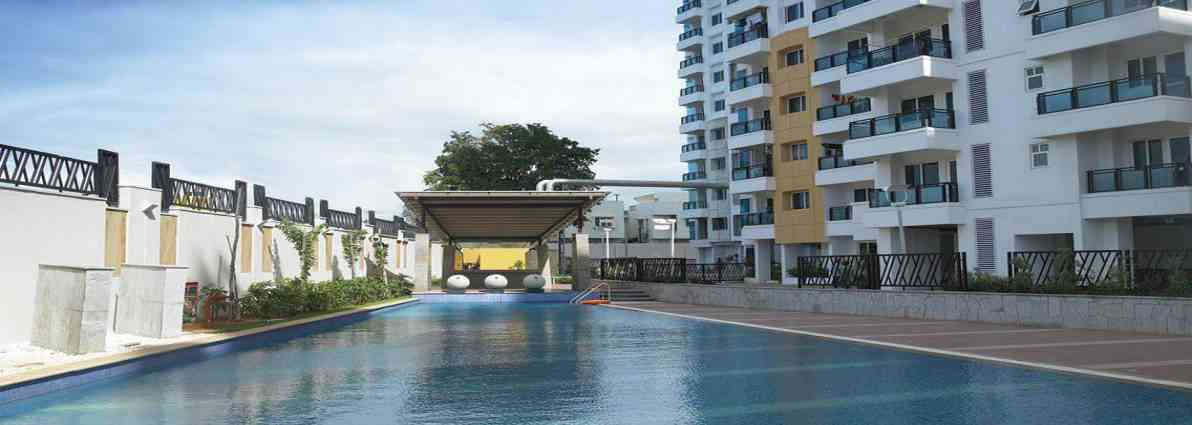 Budget hotels in bangalore book hotel room in online Bangalore resorts with swimming pool