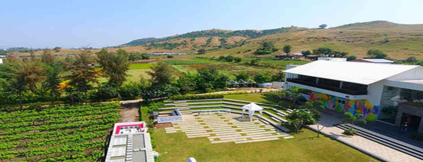 Wedding & Other Events at Amphitheatre